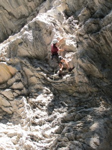 Galen Leading