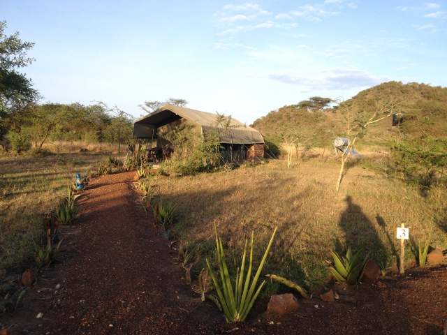 Kilima Valley tented camp
