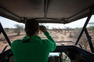 me safari